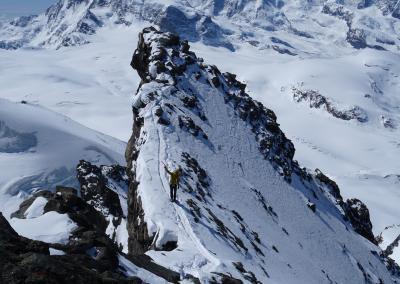 Saas Fee Runde mit Ski - Gipfelgrat Rimpfischhorn