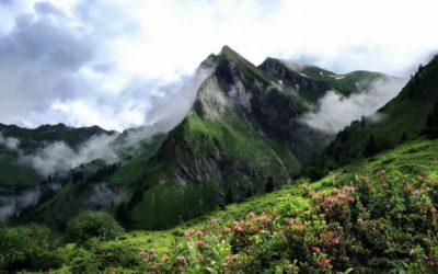 corona bergführer, Corona Tourenprogramm