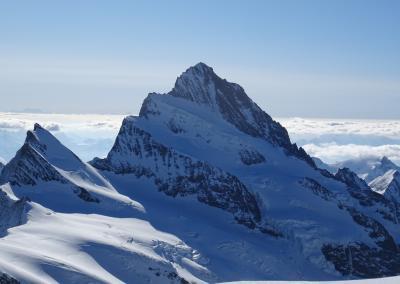 Berner Oberland - Blick zum Finsteraahorn