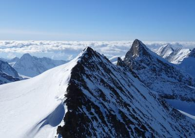 Berner Oberland - Hinteres Fiescherhorn