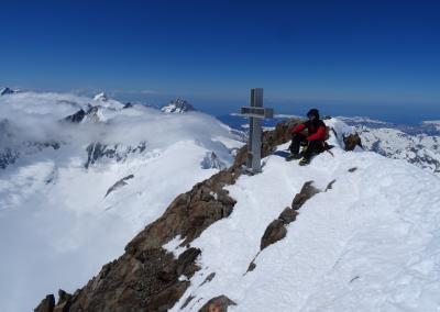Berner Oberland - Gipfel Finsteraahorn