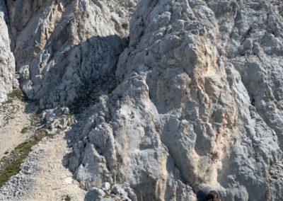 Gehrenspitze Westgrat mit Bergführer