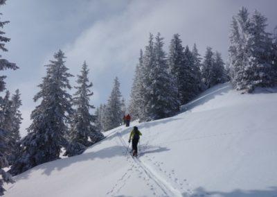Skitouren im Allgäu mit Bergführer