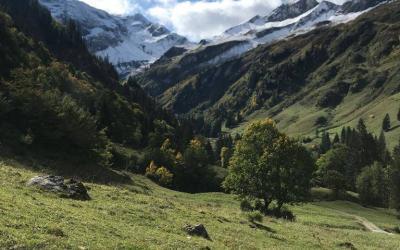 Reiseblog, Blog